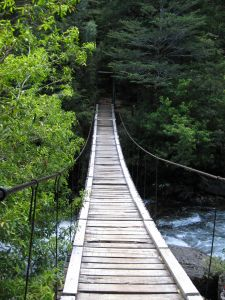 964134_old_wooden_bridge_1